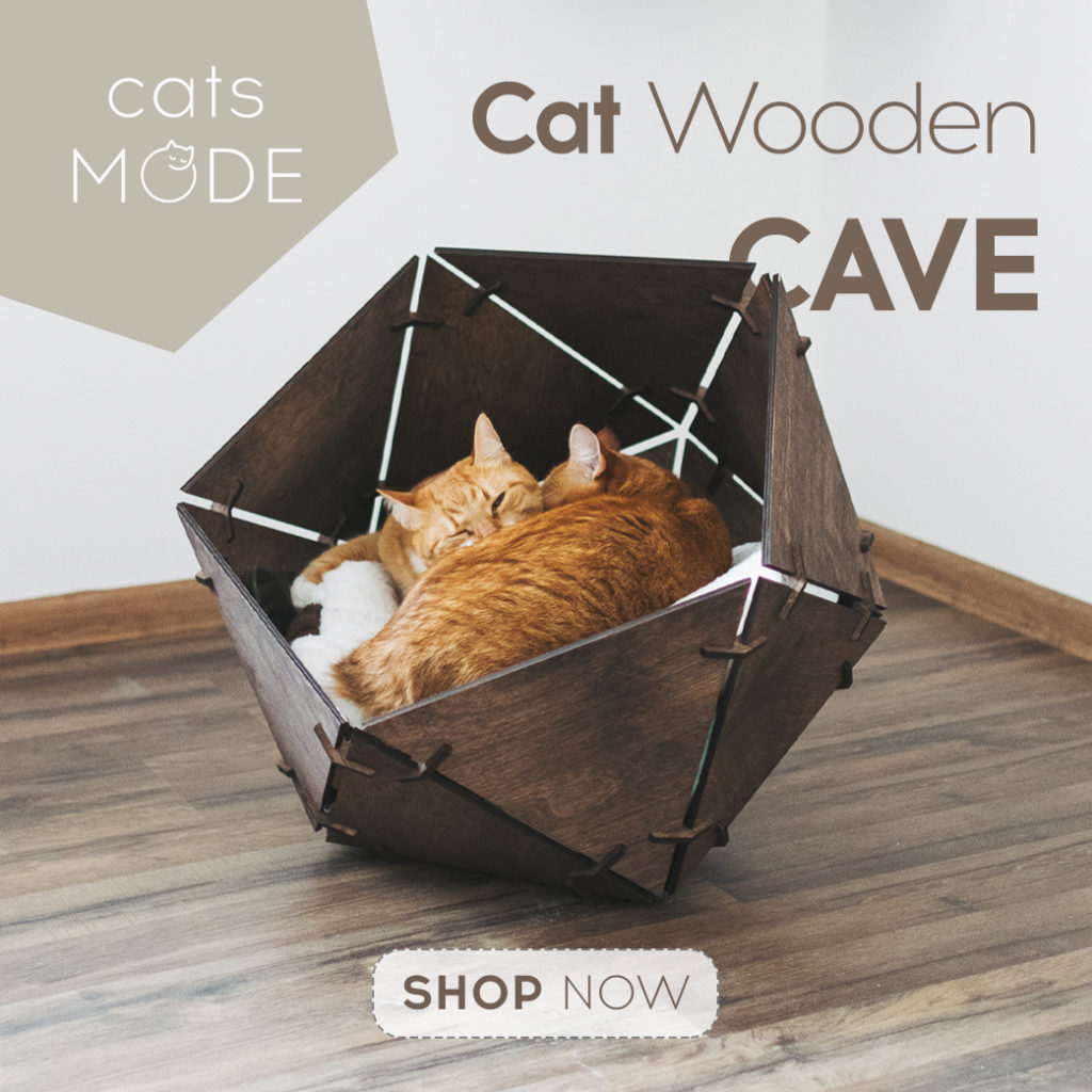 Give Your Cat The Ultimate Cat Cave!