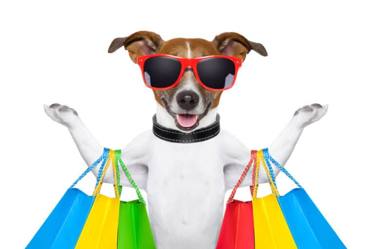 All Your Pet Needs in One Place