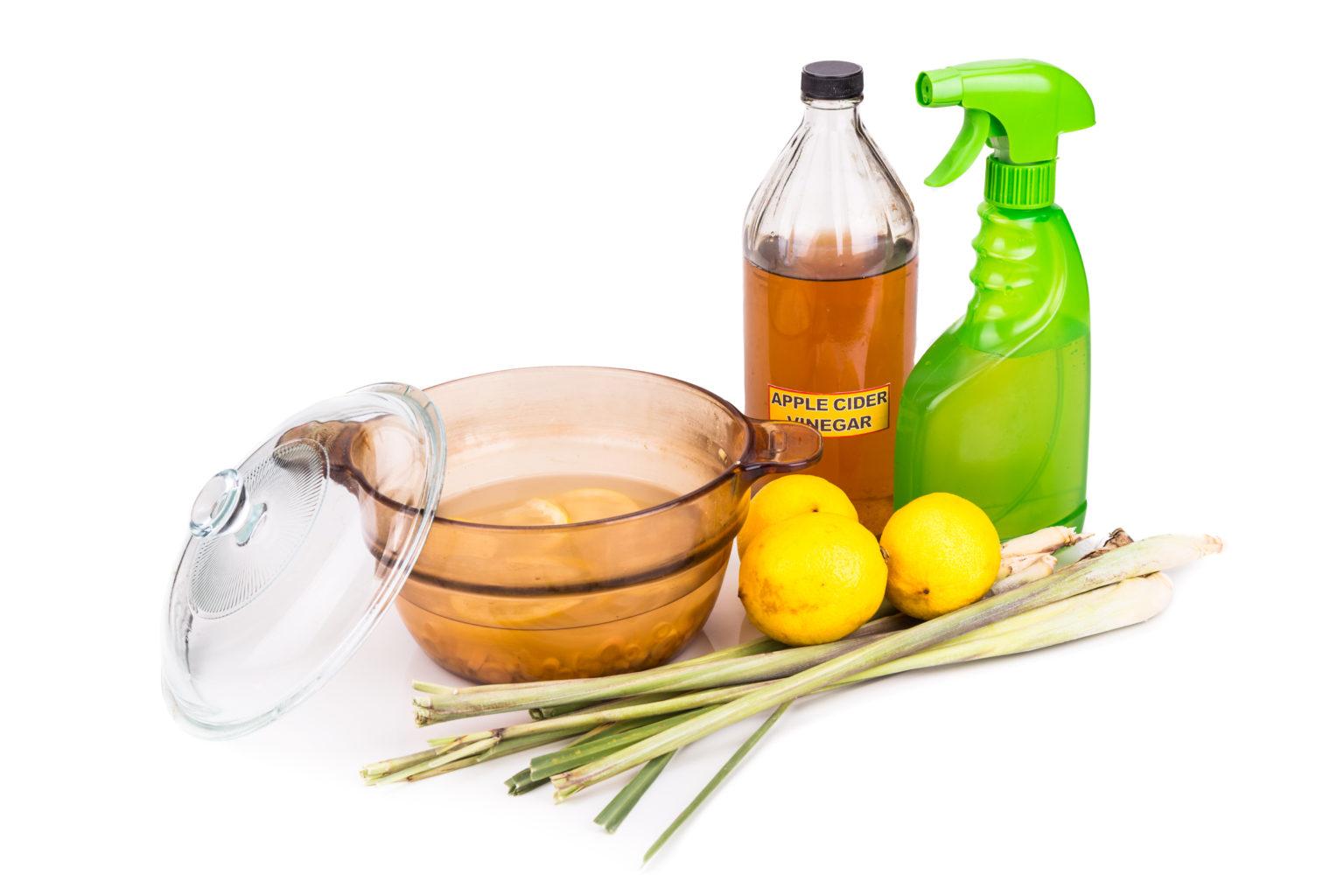 Use Apple Cider Vinegar Spray