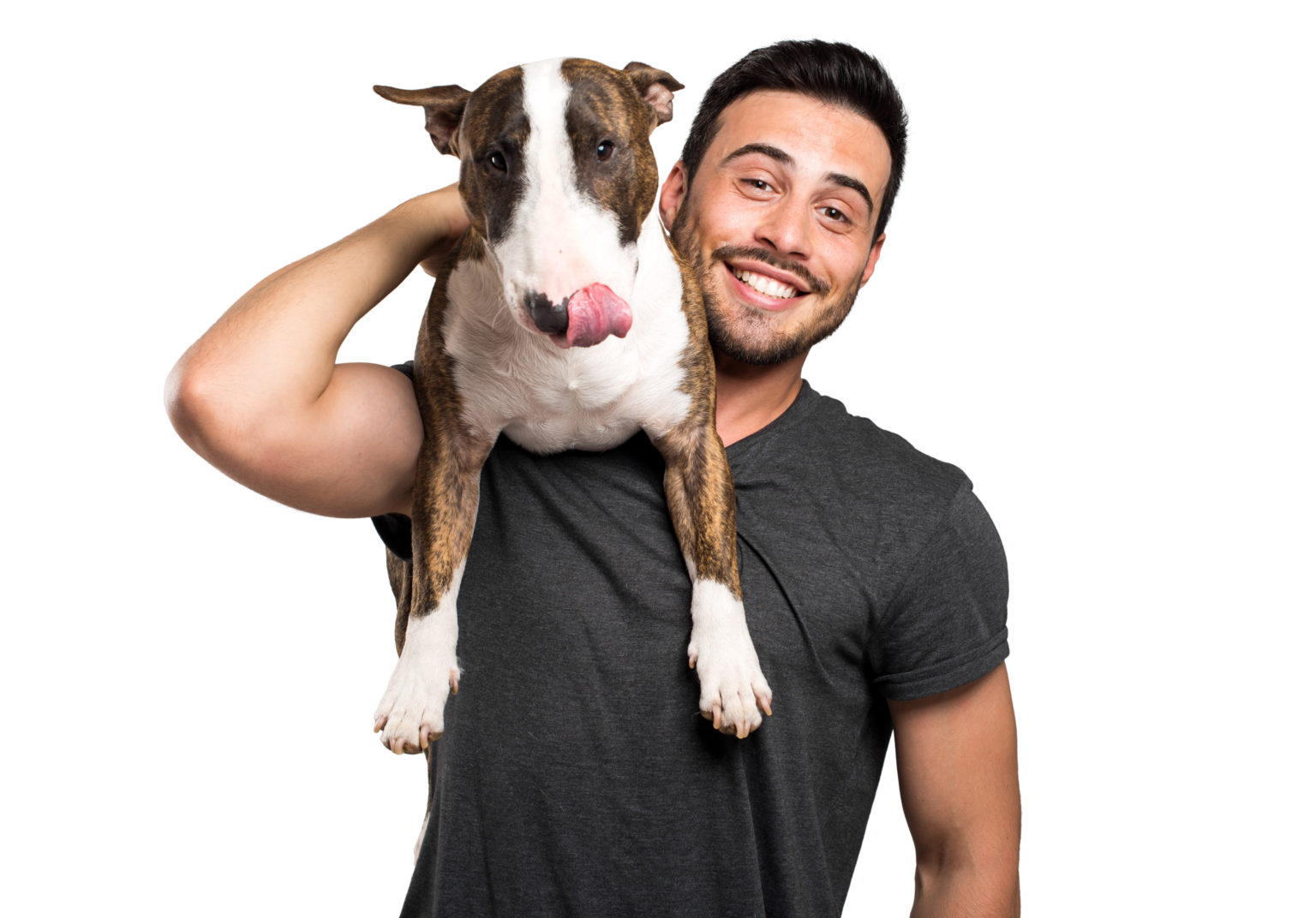 10 Reasons To Get A Dog