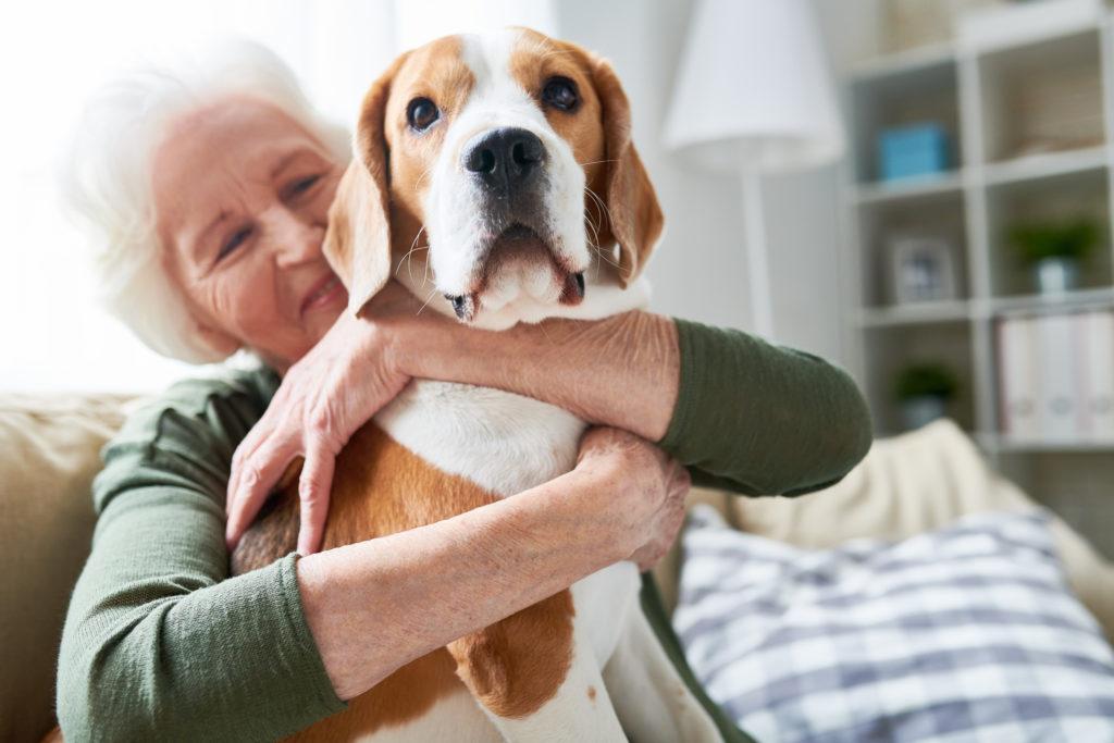 Emotional Support Dog Overview