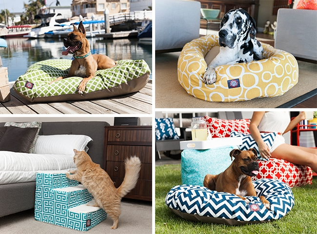Upgrade Your Pets Life With Majestic Pet Products