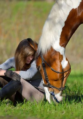 Plant-Based Supplements for Anxious Horses